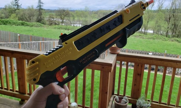 Bug-A-Salt 2.0 Fly Gun Review